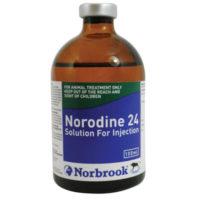 نورودین 24 | Norodine 24
