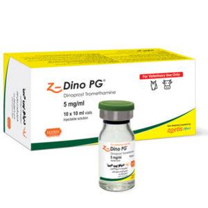 (زد) دینو پی جی | Z-Dino PG