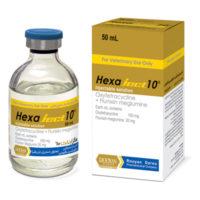 هگزاجکت ۱۰ | Hexaject 10