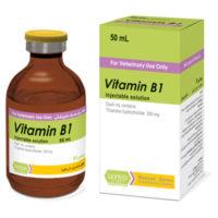 ویتامین ب1 | Vitamin B1